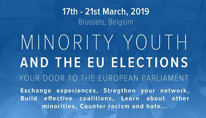 Call for Participants: Minority Youth and the European Parliament elections in 2019